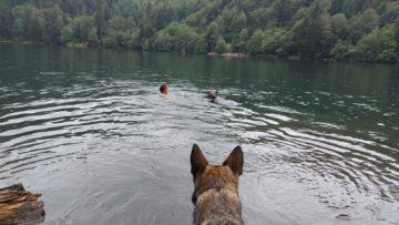 08 / 2020 : Magnifique circuit  Départ vers 8h30 de Linthal  pour le lac du Ballon et